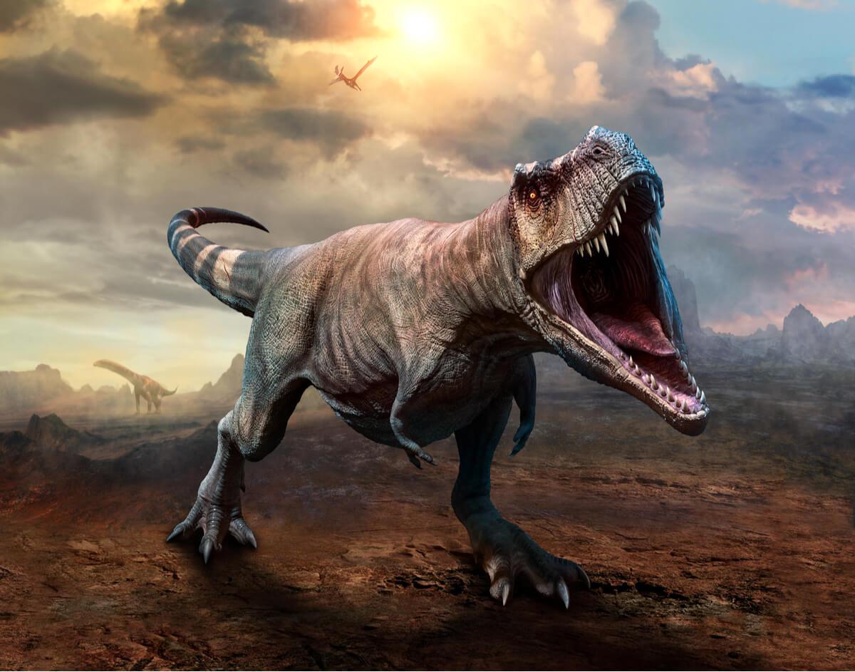 Los T-rex eran dinosaurios carnívoros.