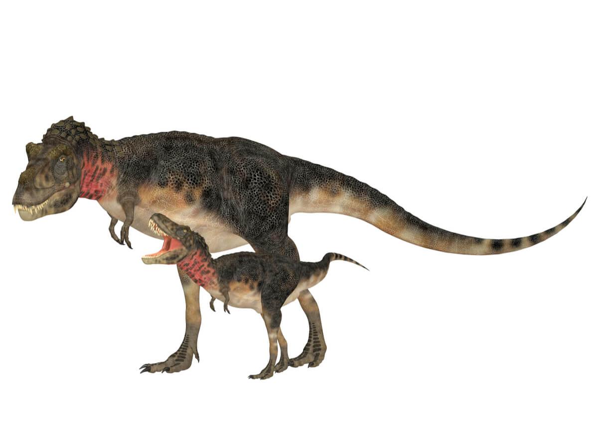 Un modelo de tarbosaurus.