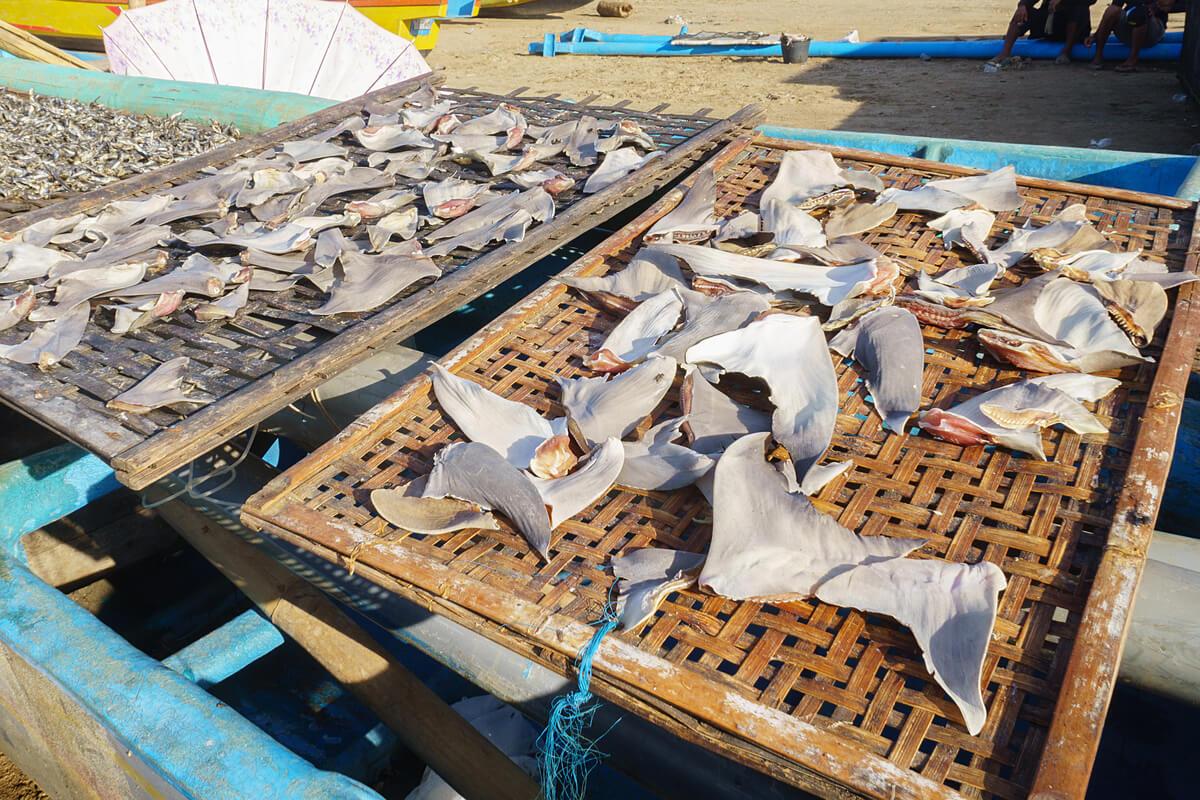 Unas aletas de tiburón en un mercado.