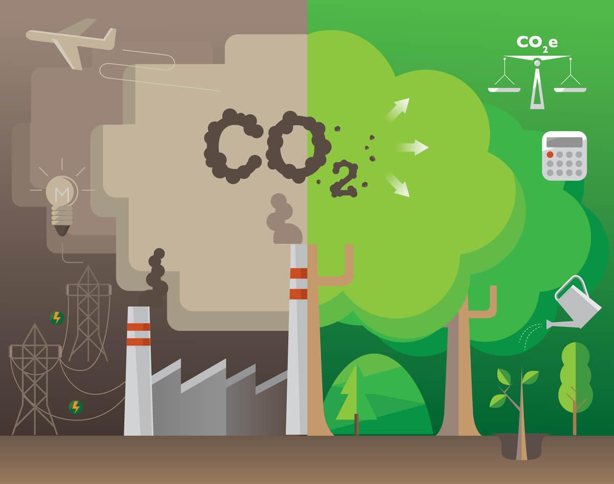 Poluição da terra.