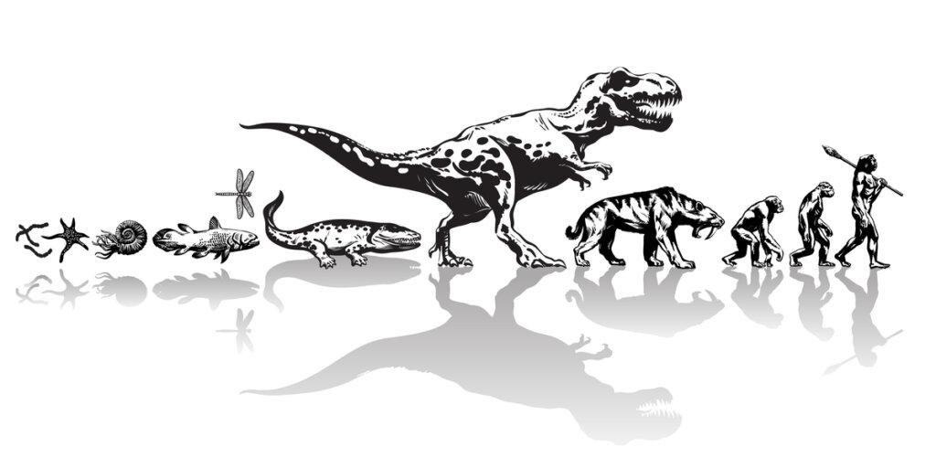 ¿Qué es la cladística y cómo se relaciona con los animales?