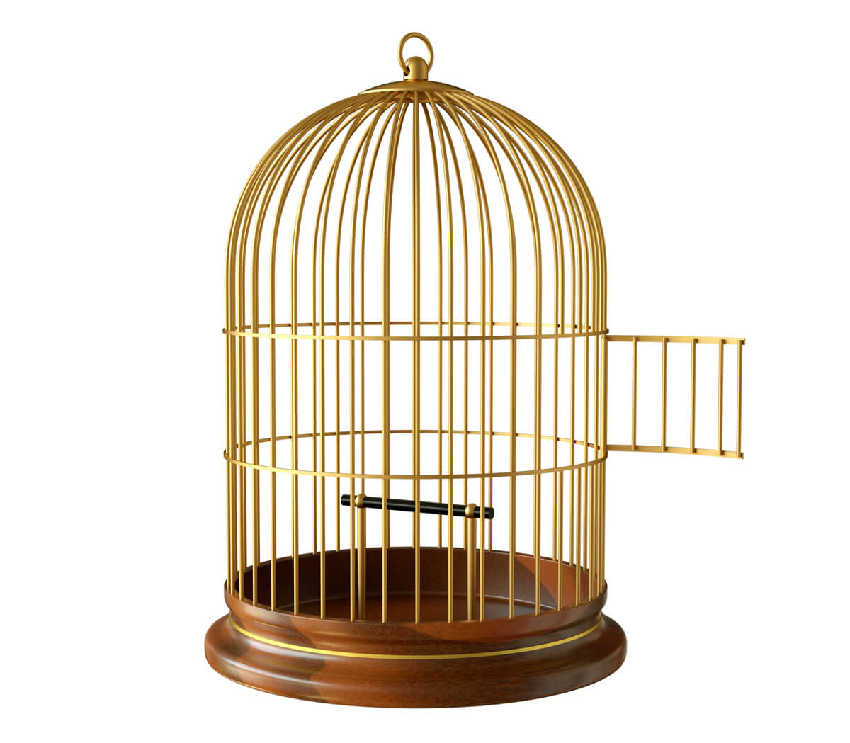 Dejar volar a un pájaro fuera de la jaula.