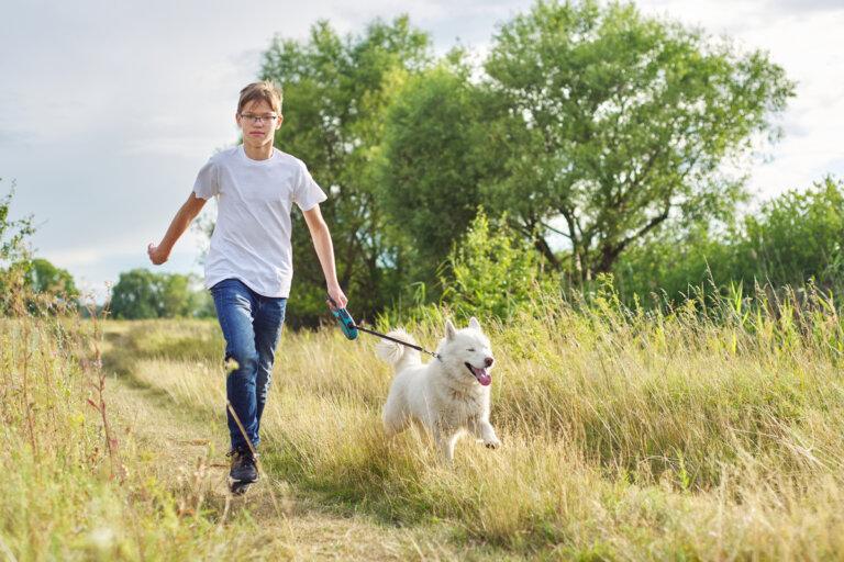 En Alemania será obligatorio pasear a los perros dos veces al día