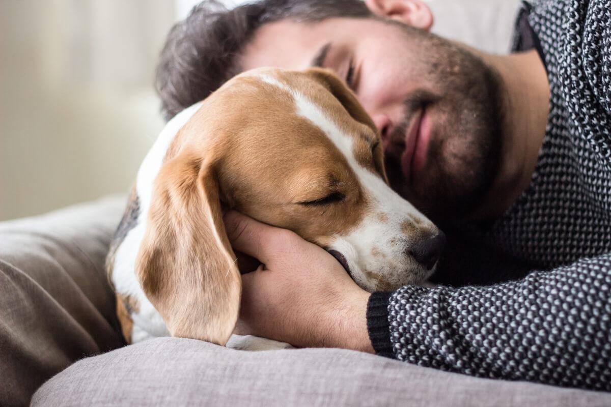 Un perro y una persona abrazándose.