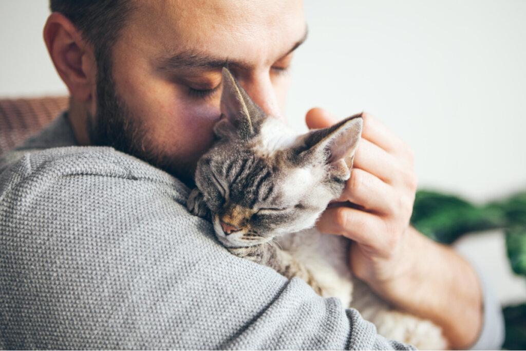 Reencuentro de un gato y su tutor después de dos años