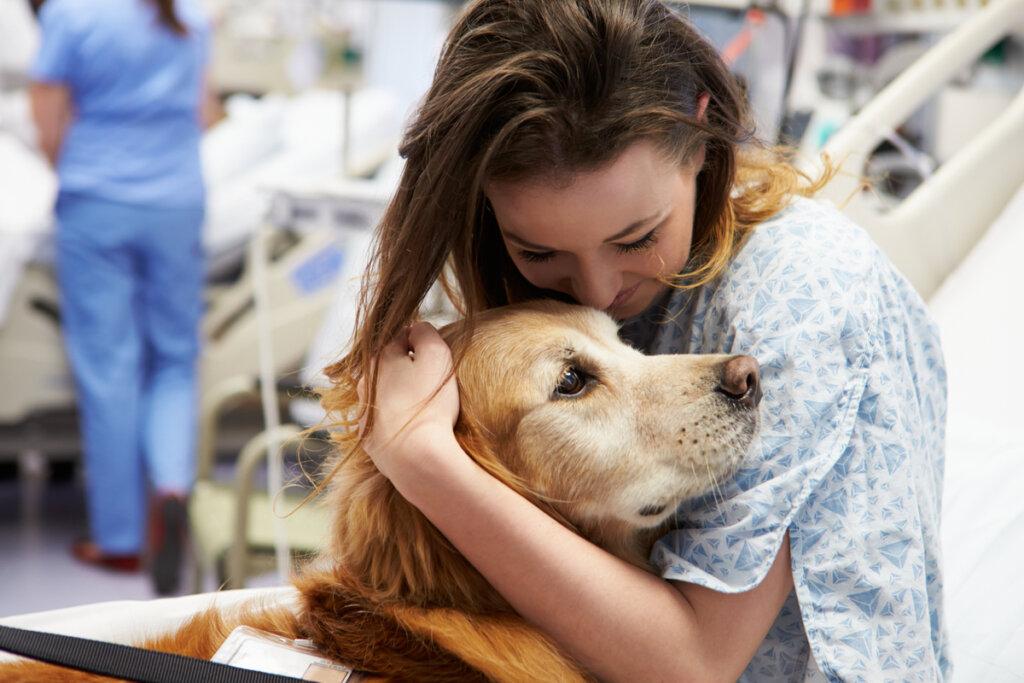 Los efectos de la terapia animal en el ser humano