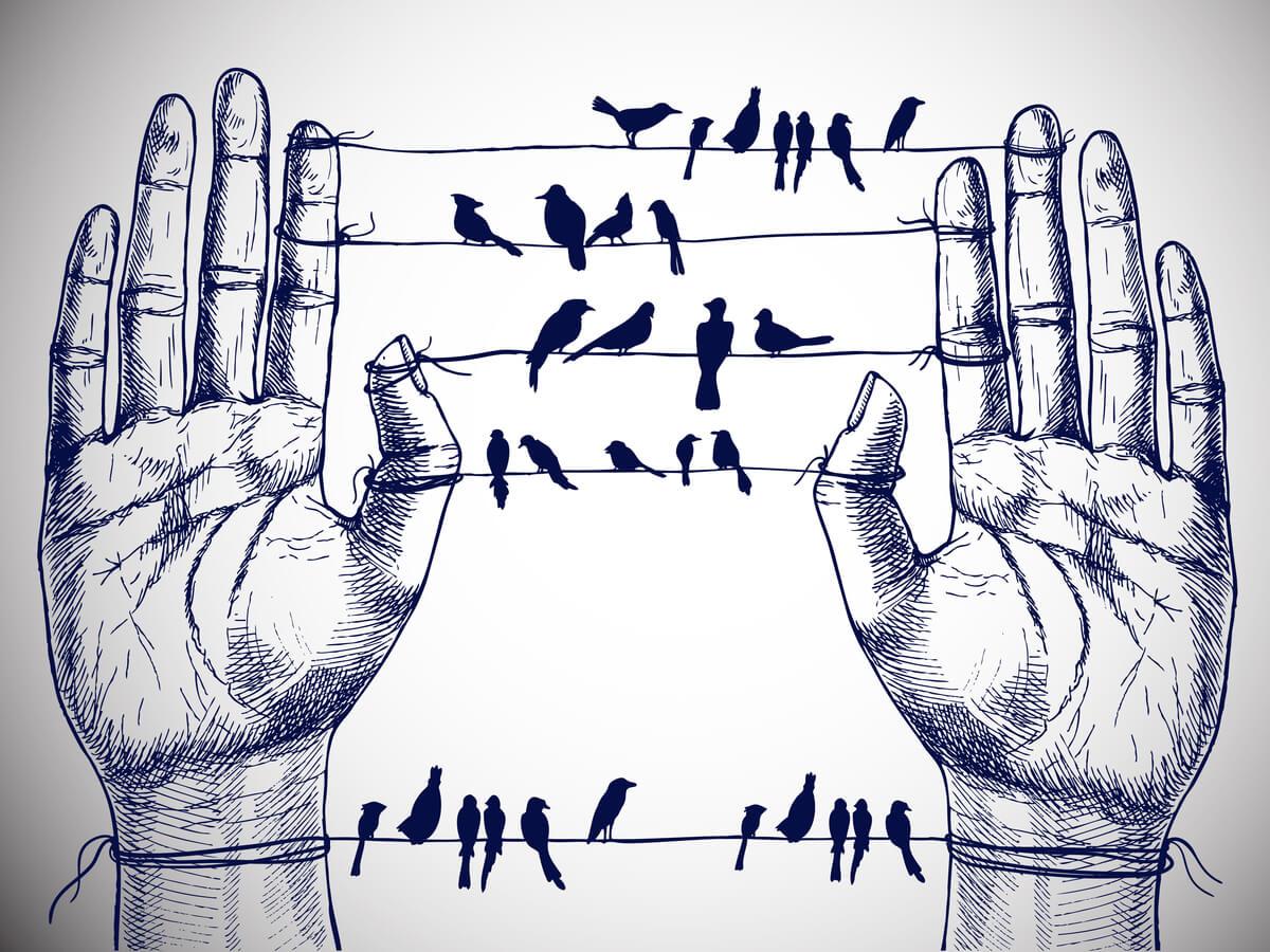 Unas manos dan cobijo a unos pájaros.
