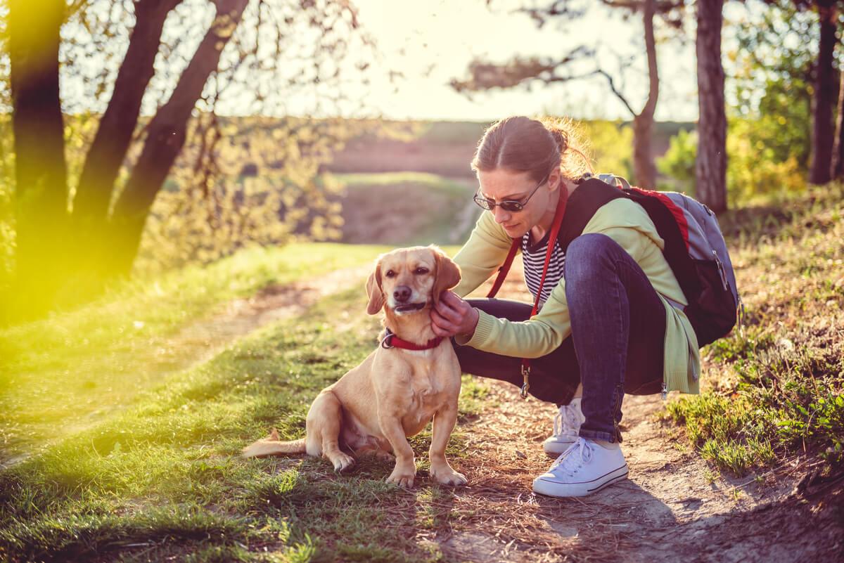 Una mujer revisa la piel de su perro.