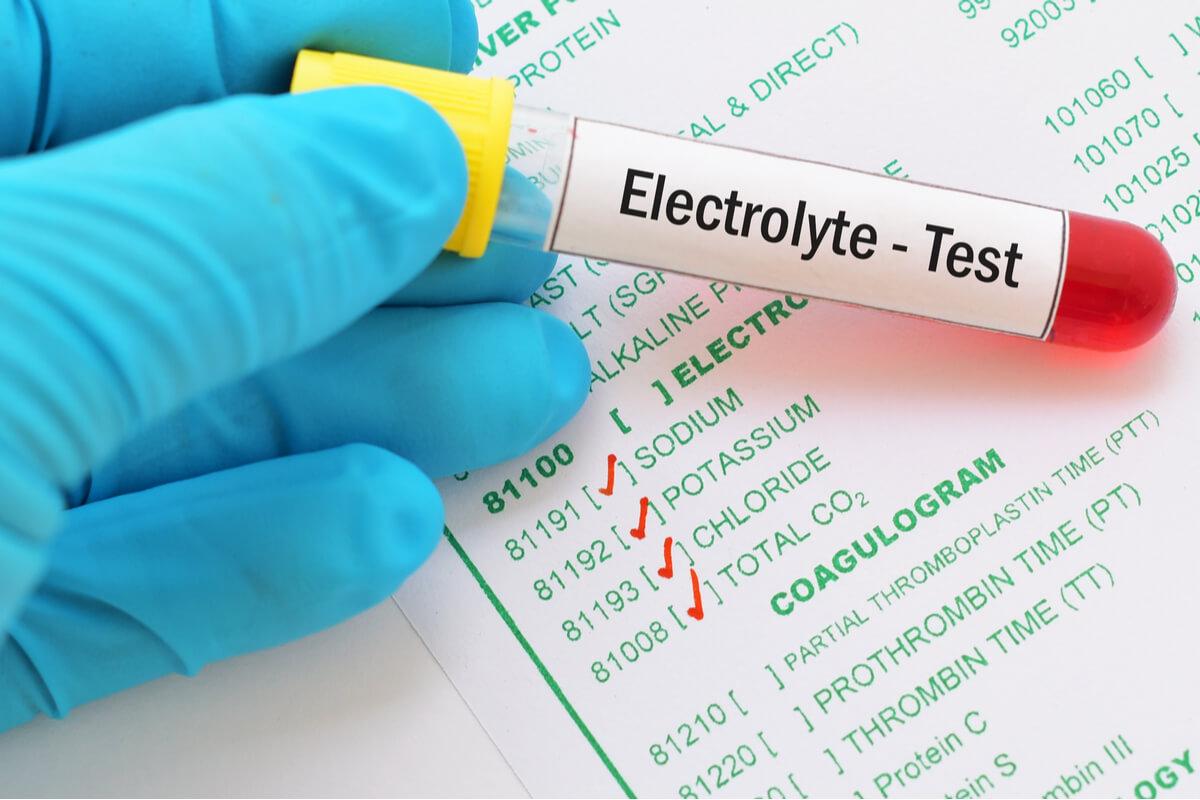 Los desequilibrios de electrolitos pueden ser graves en muchos animales.