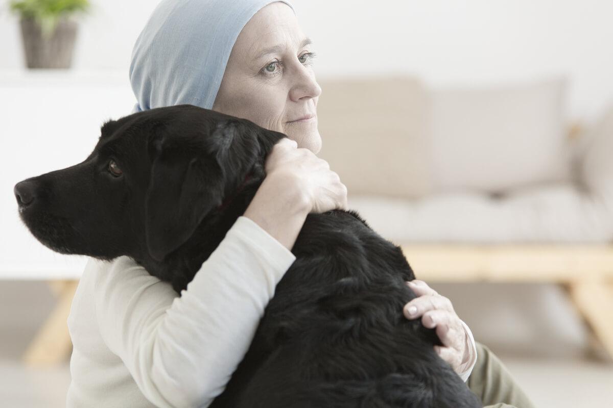 Perros para la detección del cáncer.