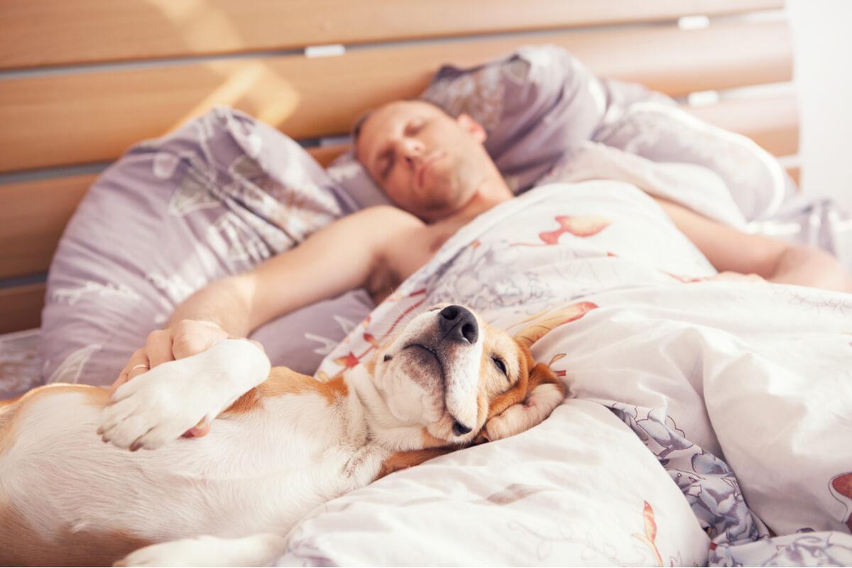 Une personne qui dort avec son chien.