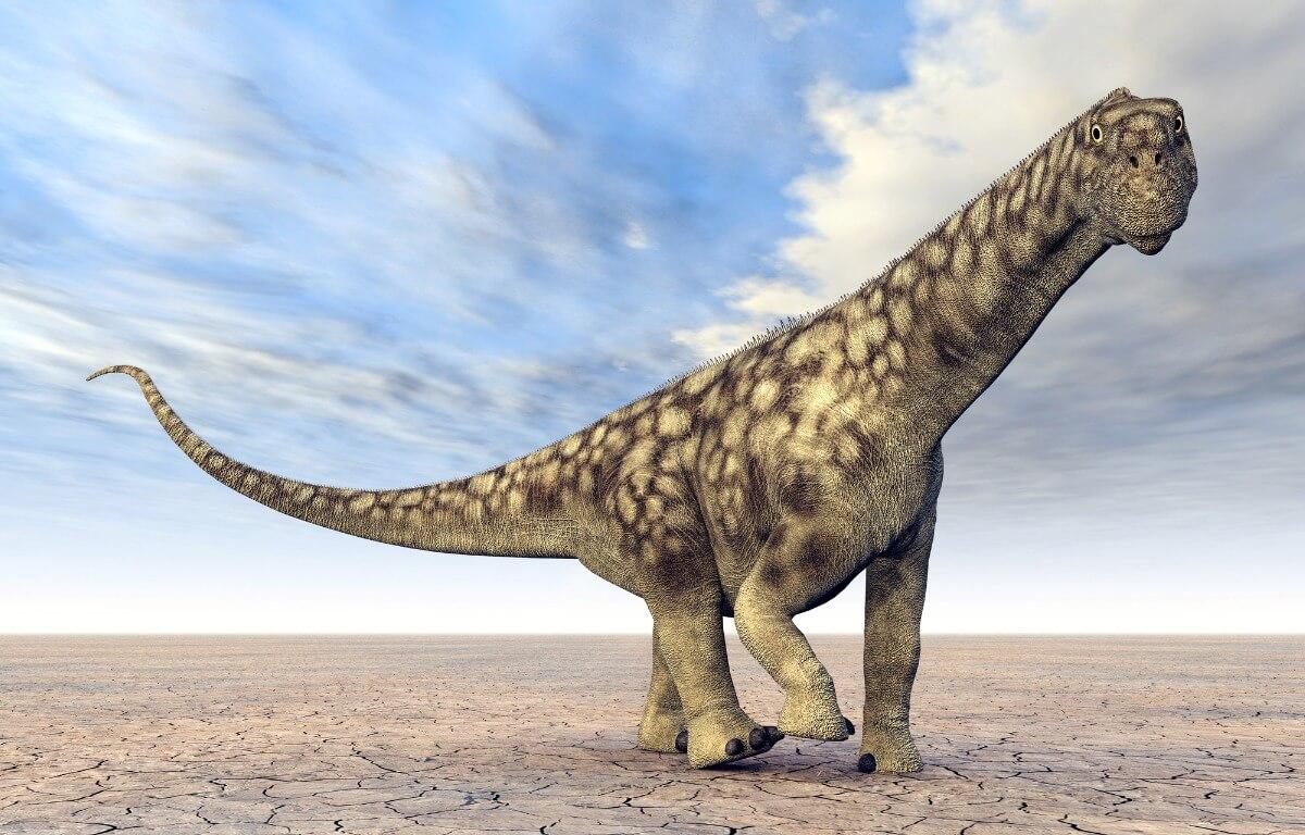Un ejemplar de Argentinosaurus.