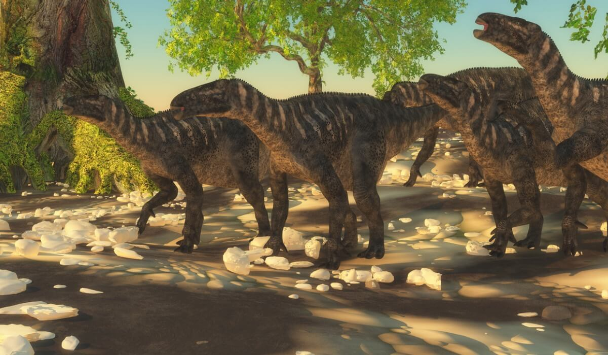 A group of iguanodons, dinosaurs from Europe.