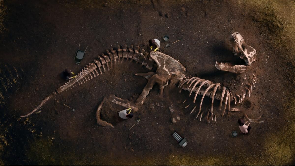 Esempio dei più antichi dinosauri.