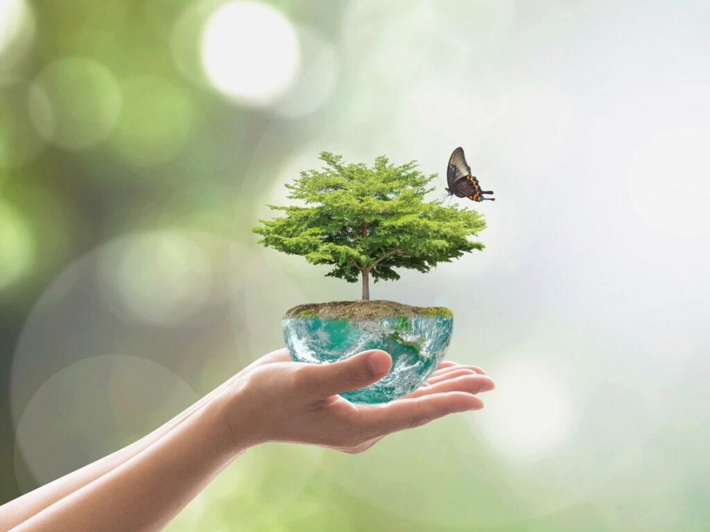 ¿Qué es un nicho ecológico?