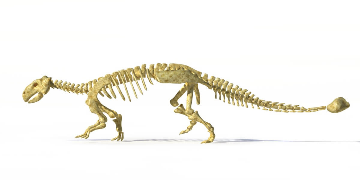 One of the dinosaurs of Europe.