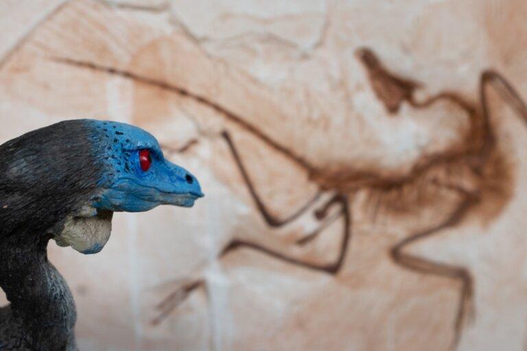 6 dinosaurios de Europa