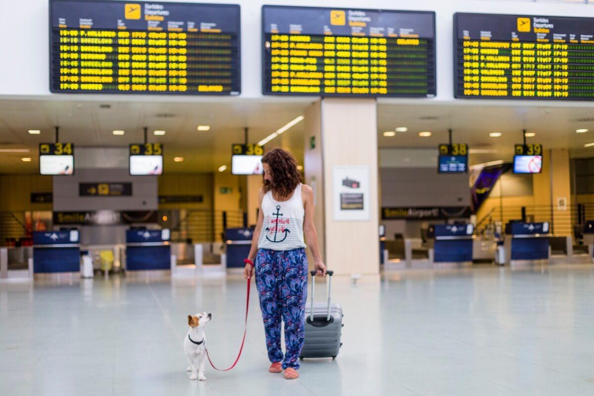 Existen razas de perros que no pueden viajar en avión.