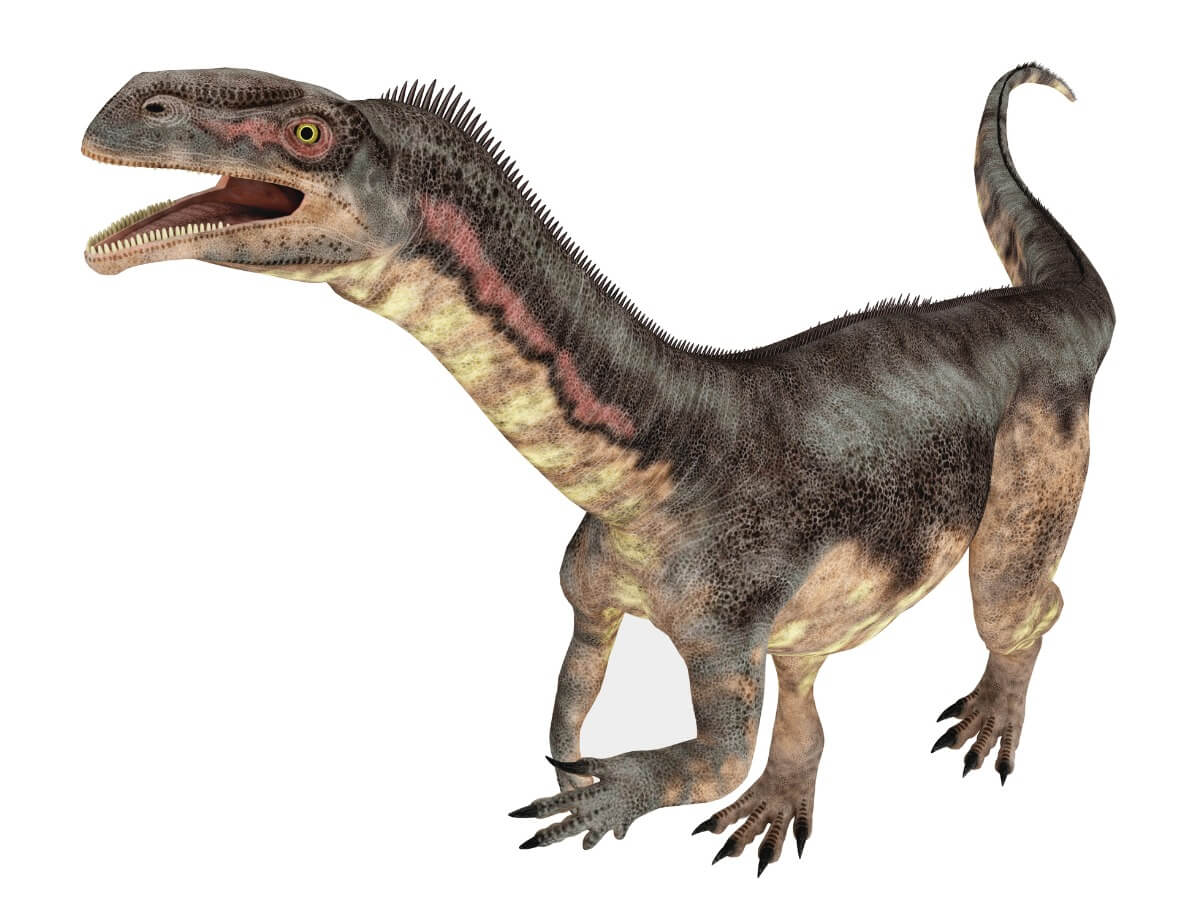 Le platosaure est l'un des dinosaures d'Europe.