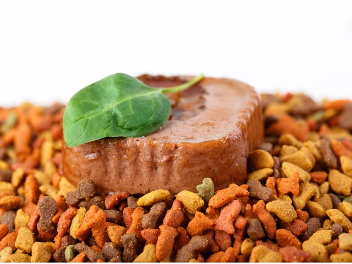 A dry food and a wet food on a white background.