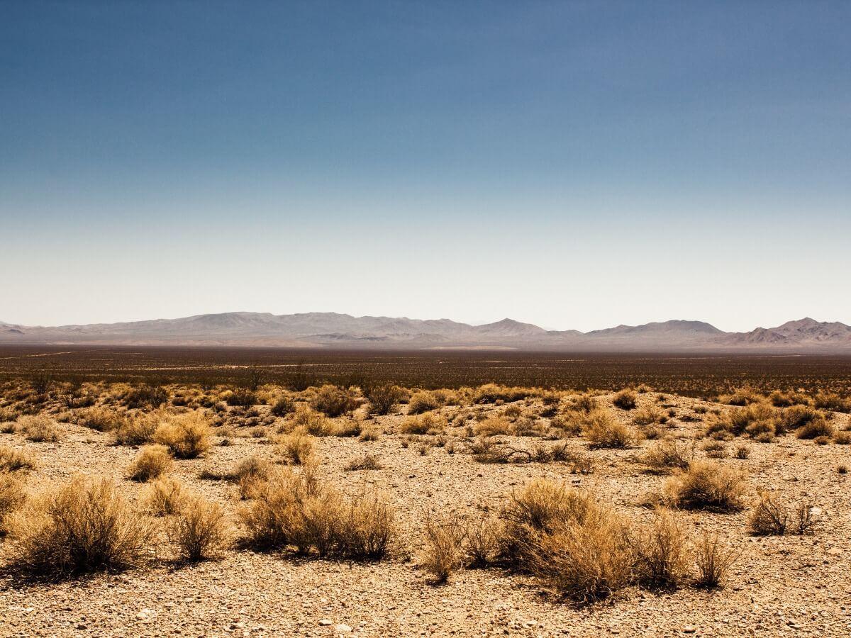 Um deserto.