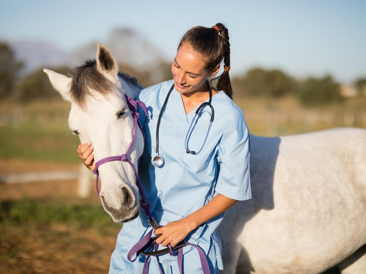 Une femme embrasse un cheval atteint de la grippe équine.