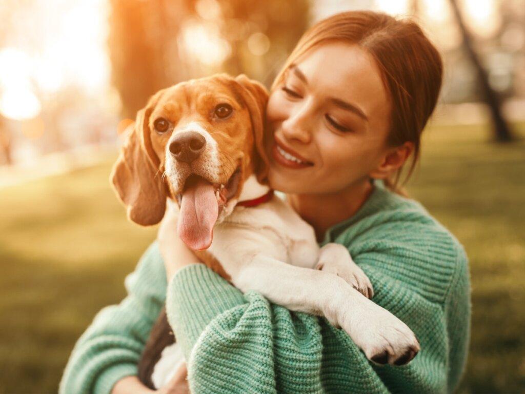 12 preguntas y respuestas del cuidado de los perros