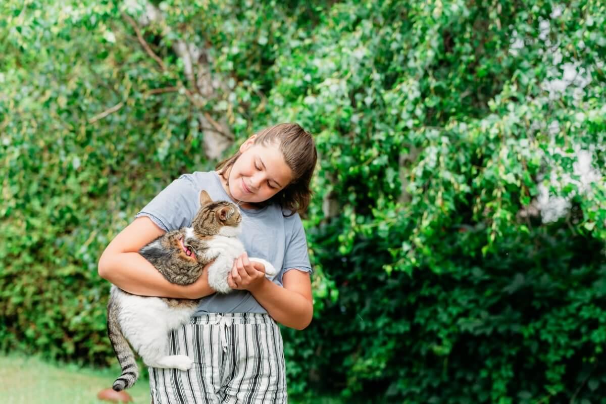 ¿Cómo atrapar un gato que se ha escapado?