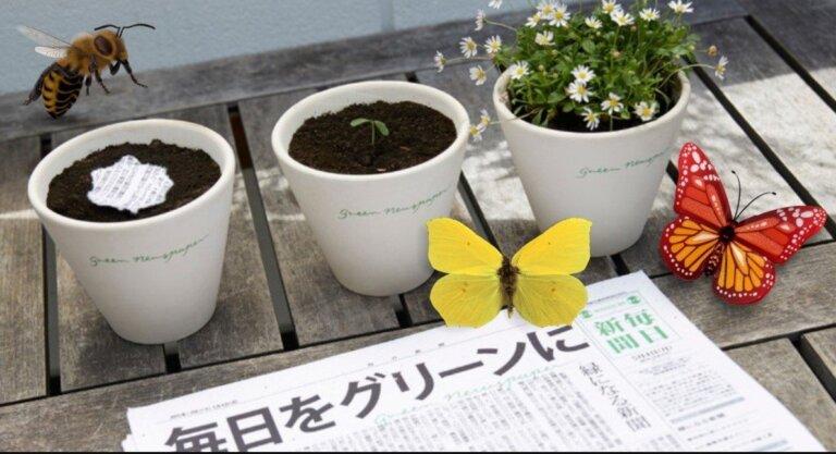 Periódico que al sembrarse se transforma en flores para abejas