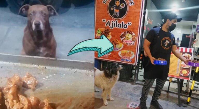 Hombre prepara comida gratis para cada perro callejero que visita su restaurante