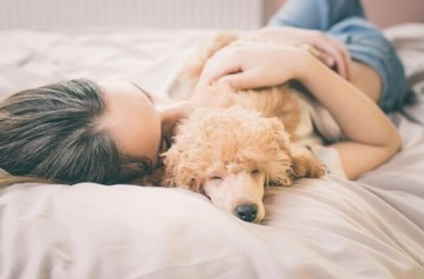 Consejos prácticos para afrontar la muerte de tu perro