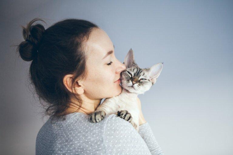 ¿Convivir con gatos es bueno para la salud?